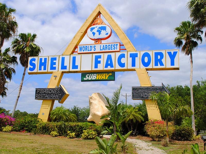 shellfactory3